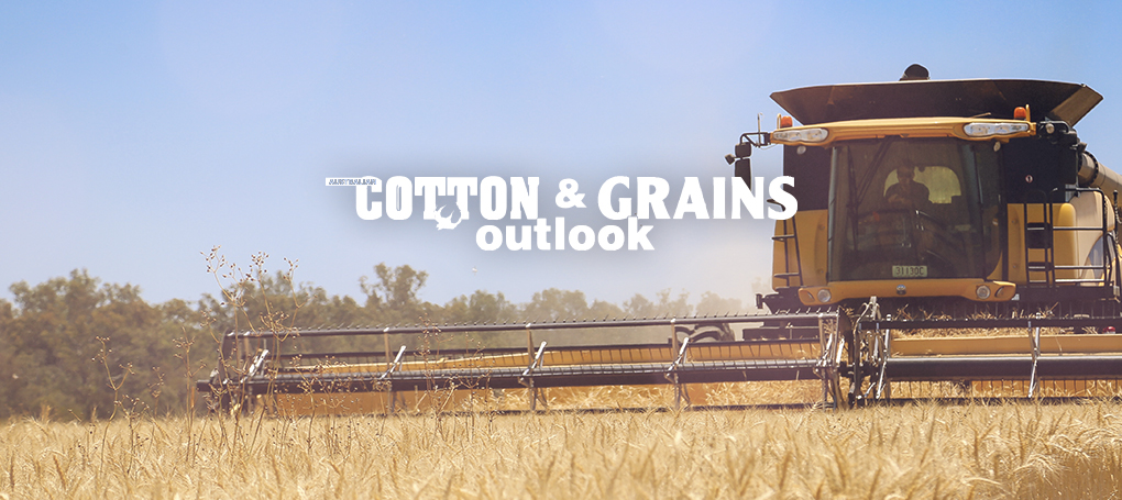 Australian-Cotton-and-Grains-Hero