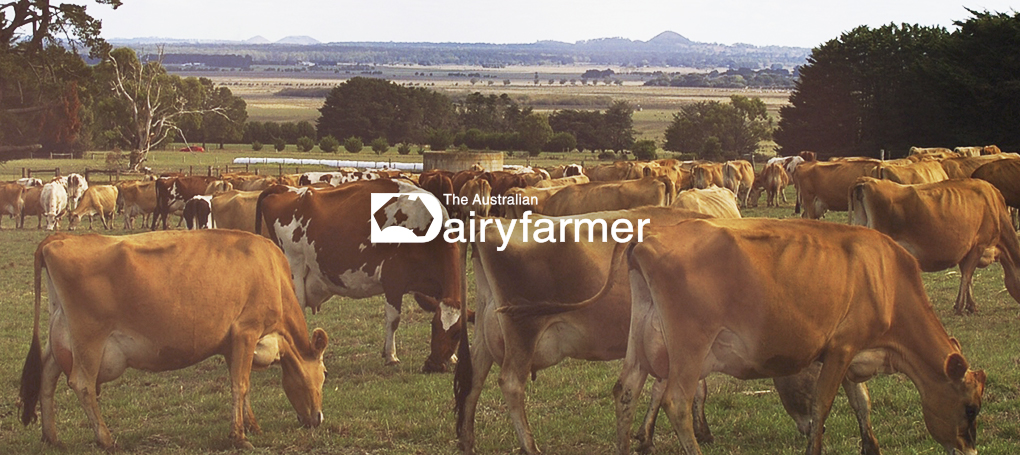 the australian dairyfarmer acm ad centre