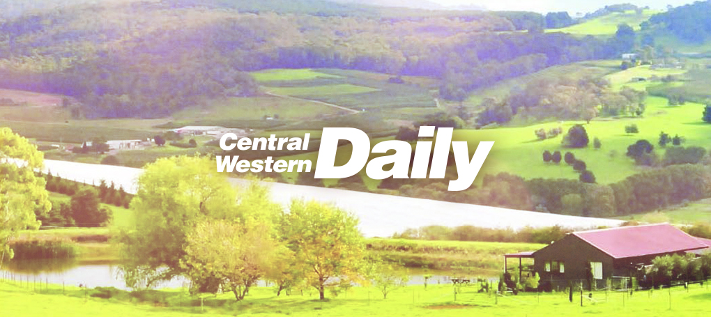central-western-daily-orange