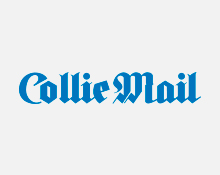 collie-mail-colour-tile
