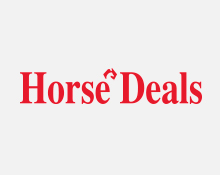 Horse-Deals-Colour-Tile