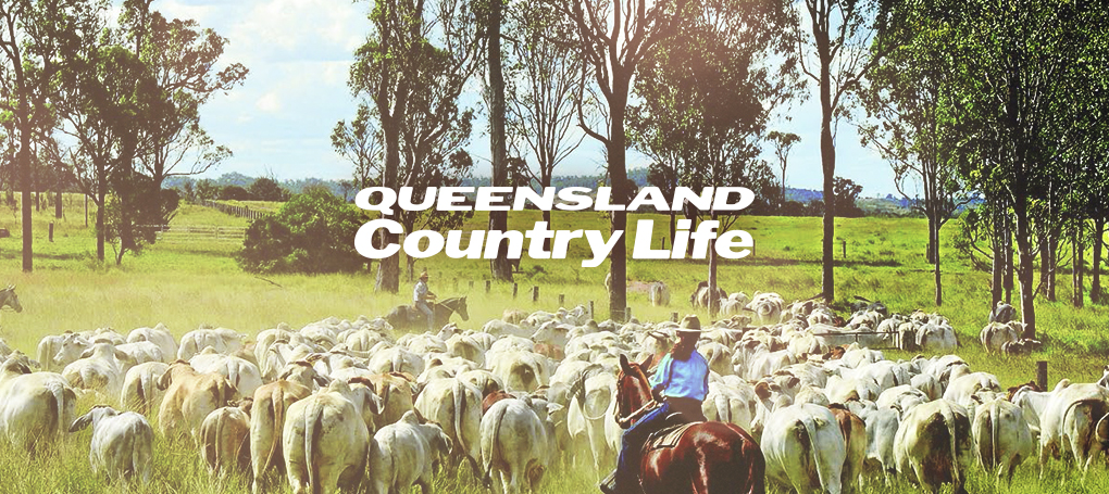 Country dating apps in Brisbane