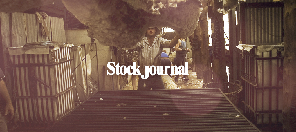 stock-journal-hero-5