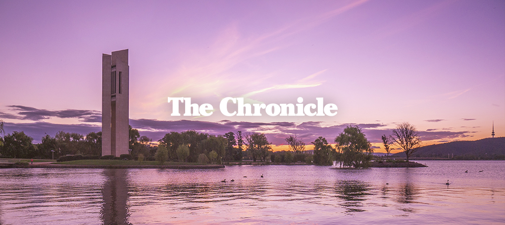 The-Chronicle-Hero