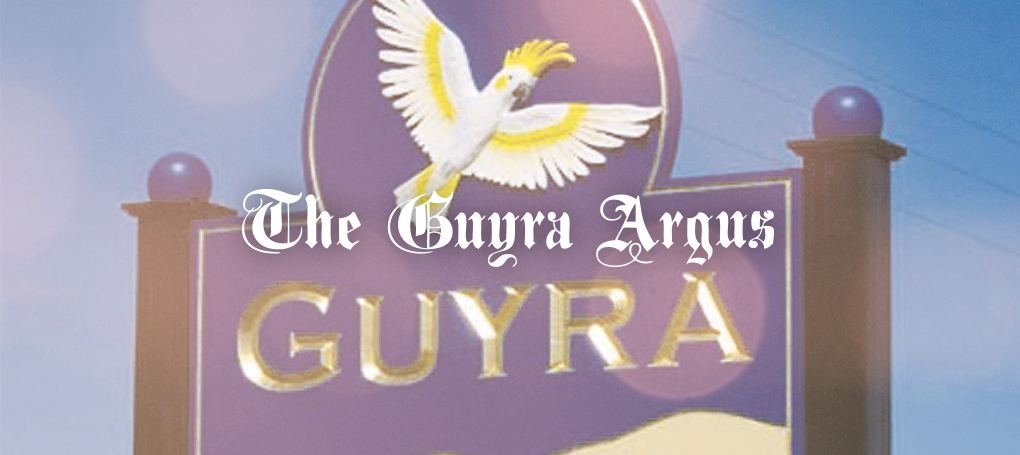 the-guyra-argus-hero