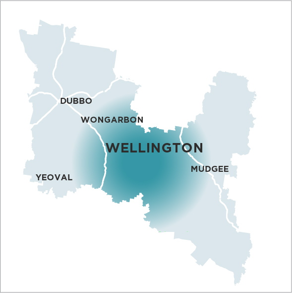 Wellington Times Map